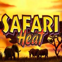 Safari Heat Slot Slot Spiel Bild