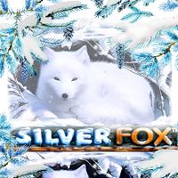 Silver Fox Slot Slot Spiel Bild