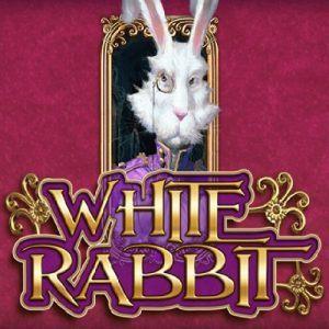 White Rabbit Kostenlos Spielen Slot Spiel Bild